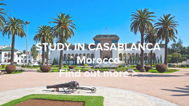 Study In Casablanca Web
