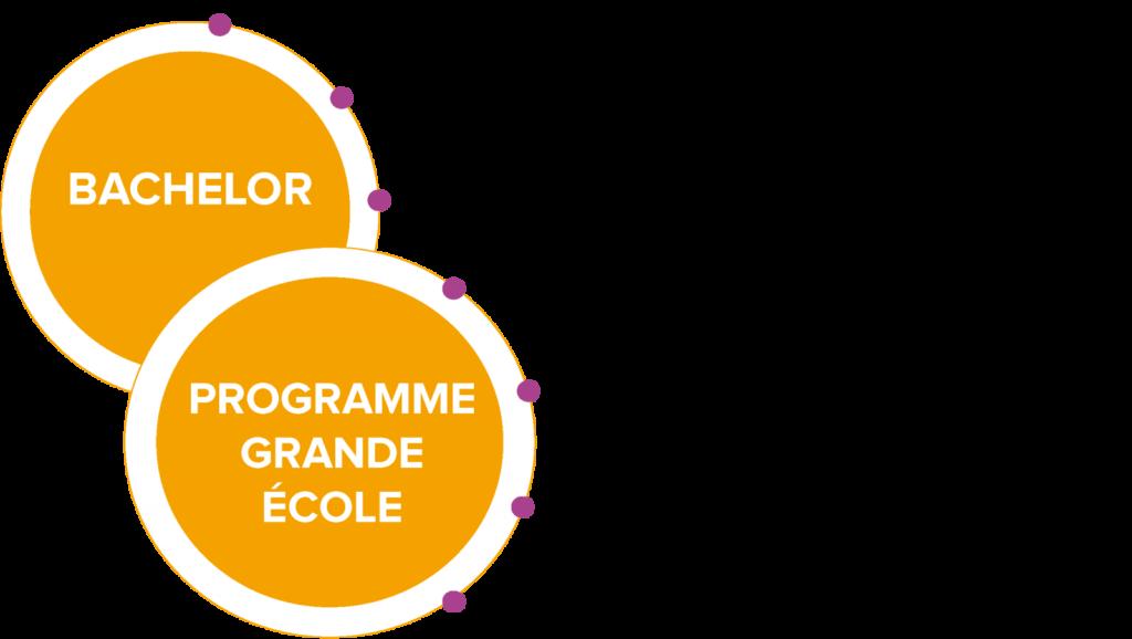 Programmes et stages