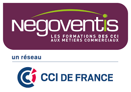 Logo Negoventis Ccifrance